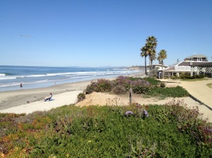 Del Mar, California. Photo by the author. Copyright reserved.